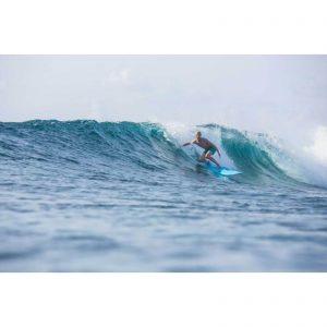 Surfboard TORQ Softboard 9.0 Longboard